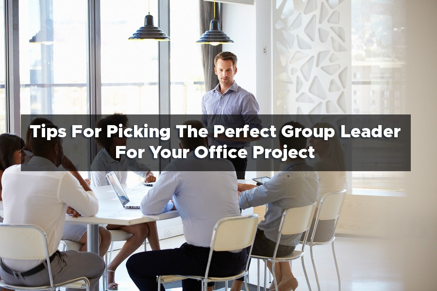 Tips For Picking The Perfect Group Leader For Your Office Project
